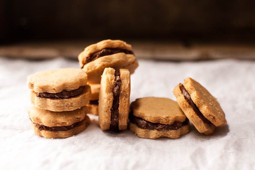 PB & Chocolate Cookies