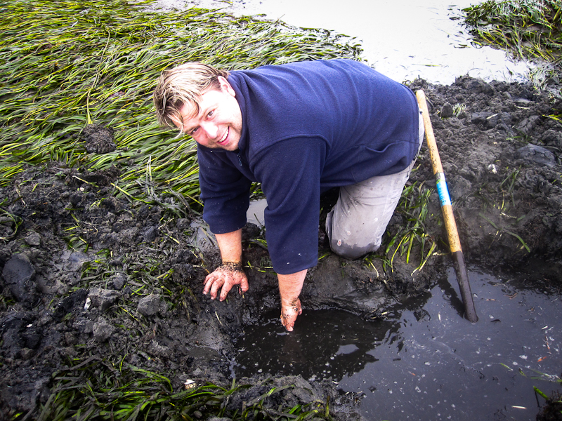 Andrew clamming